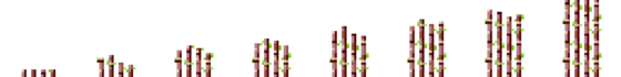 Sugarcane Phases.png
